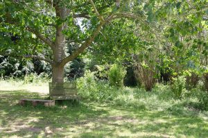 seating in the meadow
