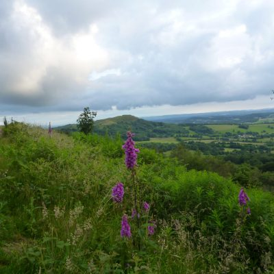 View from path on the Malvern hills